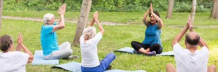 Attività fisica regolare nel parco cittadino per gli anziani Archivio Fotografico