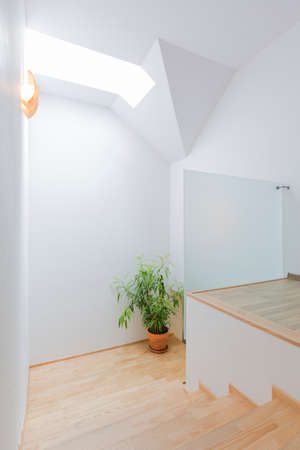 Minimalist bright staircase with white walls, plant and wooden steps Stock Photo