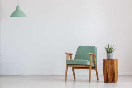Armchair and potted plant in a room with mint lampshade Stock Photo