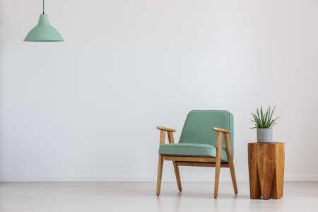 Fauteuil en potplant in een kamer met mint lampscherm