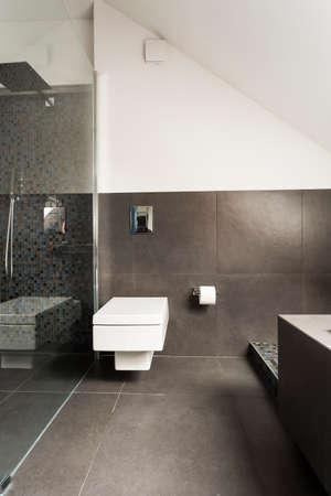 Bathroom Stal Minimalist modern minimalist bathroom with transparent shower stall stock