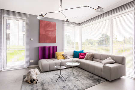 Bright modern living room with comfortable corner couch, artwork, coffee table, window blinds and rug