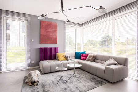 Luminoso salotto moderno con comodo divano ad angolo, opere d'arte, tavolino, tende da sole e tende da sole Archivio Fotografico - 83756026