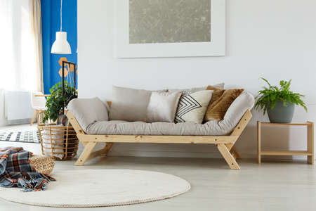 Comfortable Cozy Sofa, Rug, Painting, Pillows, Plants And Natural Eco  Materials In