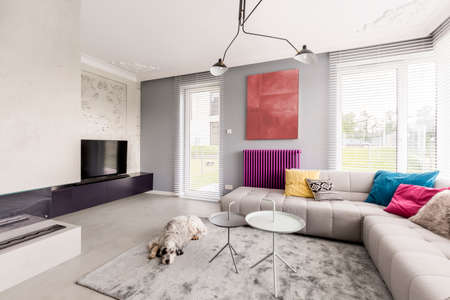 Dog sleeping in contemporary living room with big windows, corner beige couch with colorful pillows and abstract painting
