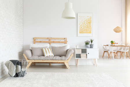View of white trendy lagom flat with living room and dining room 免版税图像