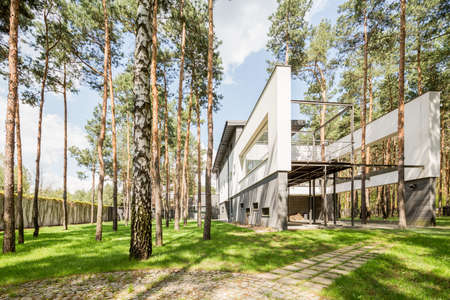 Cropped shot of a modern house exterior, surrounded by many trees