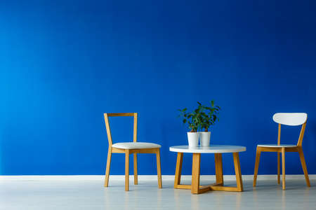 Minimalistic scandi style living room with two chairs and a small wooden table with plants on it Foto de archivo
