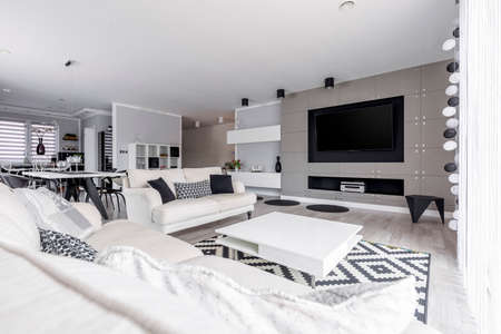 Gray living room in spacious high-end monochromatic loft 免版税图像 - 84519850