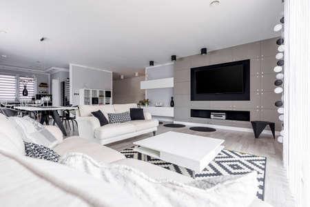 Grijze woonkamer in ruime high-end monochromatische loft