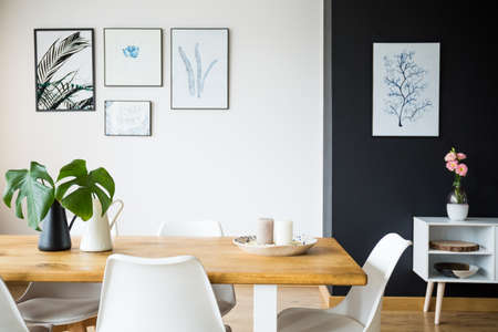 Modern dining room with plant decoration and pictures