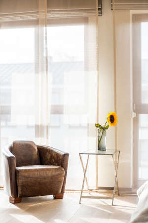 Vintage leather armchair and sunflower in vase in minimalist bright room
