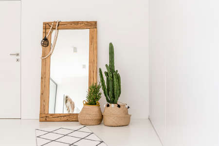 Enormous mirror accompanied by plants in the living room