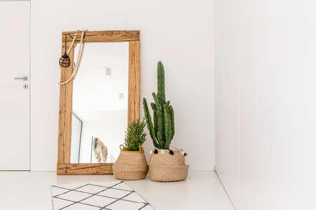 Ogromne lustro połączone z roślinami w salonie