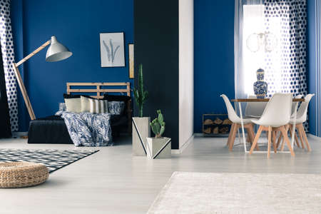 Open interior with bold blue walls, bedroom and dining room