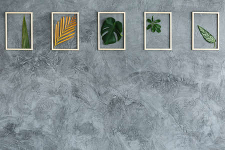 Fresh leaves in bright wooden frames hanging on grey wall