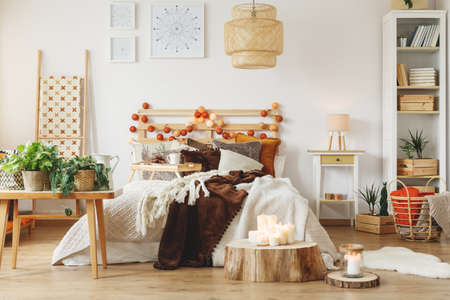 Bright room with fresh plants and lighted candles