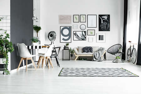 広々とした黒と白の家具付きリビングルーム