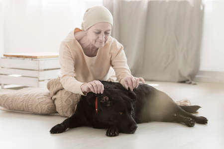 Senior woman with cancer decreasing psychological distress while playing with dog Stock Photo
