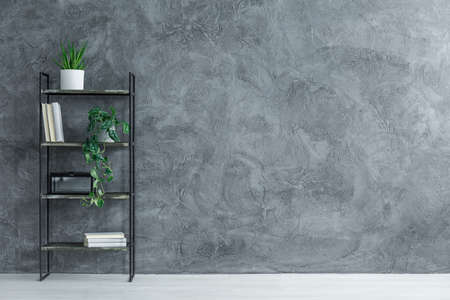 Black metal rack with potted plants and books in a photo with copy space Stock Photo