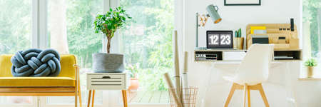 Fresh potted plant placed on small wooden cupboard in bright living room Stock Photo
