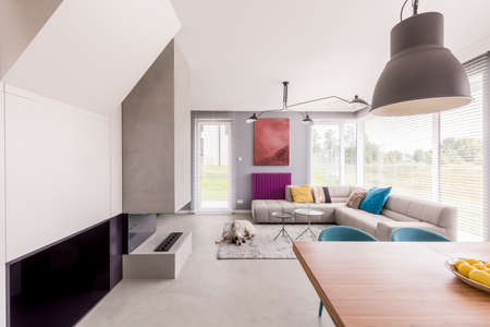 Modern and colorful day room with a chimney, large sofa with pillows next to two small tables, and a dog lying on the soft carpet