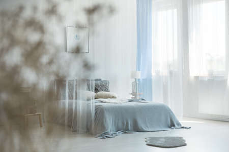 King-size bed with canopy in monochromatic bedroom interior with grey fur on the floor Banco de Imagens - 87912119