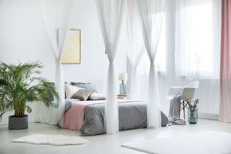 Plant next to king-size bed with canopy in sophisticated bedroom interior with gold painting on wall
