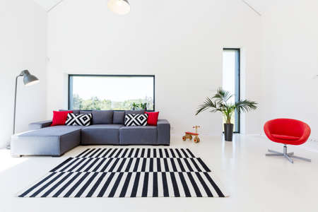 Living room with black and white rugs and grey comfortable sofa