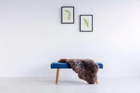 흰 벽에 매달려 포스터 방에 파란색 복도 벤치에 던져 모피 양탄자 스톡 콘텐츠