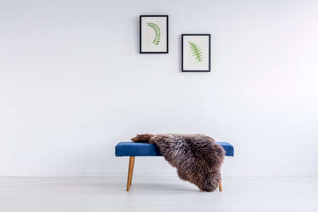 Furry rug thrown on blue hallway bench in room with posters hanging on white wall 版權商用圖片