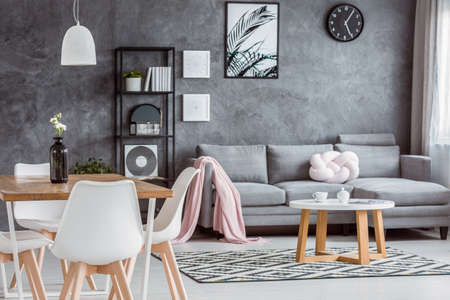 Modern, gray apartment with cozy open dining area and minimalist living room interior with comfortable couch, coffee table and pink blanket