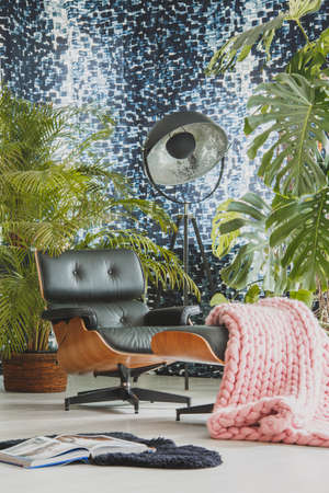 植物とモダンなリビング ルームに黒革長椅子にピンクのニット毛布
