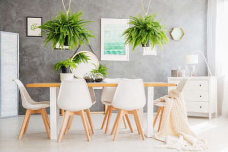 Ferns above table and white chairs in dining room with white cupboard, mirror and poster on grey wall