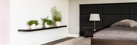 Shot of a wooden shelf with plants hanging on the wall in a modern bedroom interior