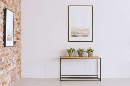 Three potted plants standing on a wooden console table against white wall with simple painting in neutral colors
