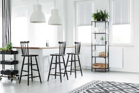 Black bar stools at kitchen island in bright living room with geometric carpet and fern on shelf 版權商用圖片