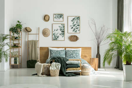 Posters and hats on white wall above king-size bed in travelers bedroom with plants Reklamní fotografie