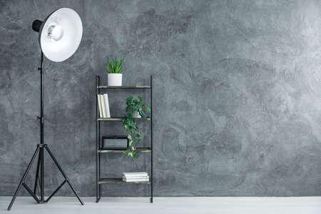 開いたスペースの灰色の織り目加工の壁に対して植物および本が付いている棚の隣のデザイナーランプ、コピースペースの内部の概念 写真素材