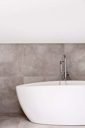 Oval bathtub with stainless steel faucet in empty bathroom with grey glaze Reklamní fotografie