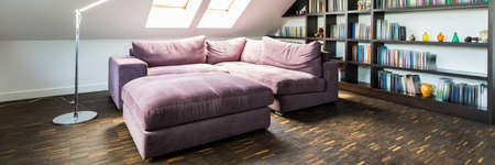Shot of a beautiful purple sofa standing in the modern interior