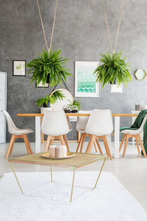 Plate with candles on the table in flat interior with white chairs and ferns against textured wall Lizenzfreie Bilder