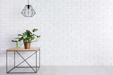 Verse groene ingemaakte installatie die zich op vierkante lijst in ruimte met lege bakstenen muur bevindt