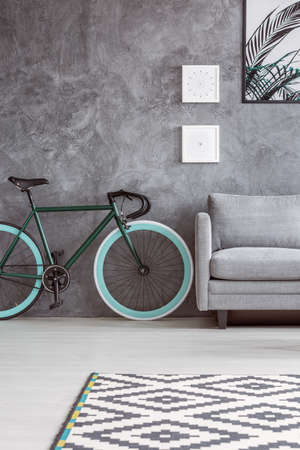 Spacious apartment with gray interior design, dark green bicycle, gray sofa, poster and patterned black and white rug