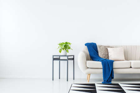 Blue blanket on beige sofa against the wall with copy space in bright living room with plant on cabinet and geometric carpet