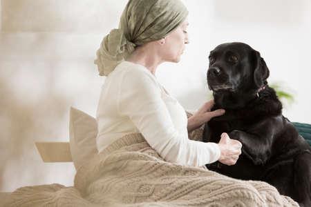 애완 동물 보조 요법 치료로 고통받는 암 환자
