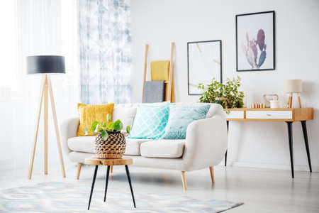 Stool with plant on grey carpet in cozy living room with cabinet and colorful pillows on couch next to a lamp