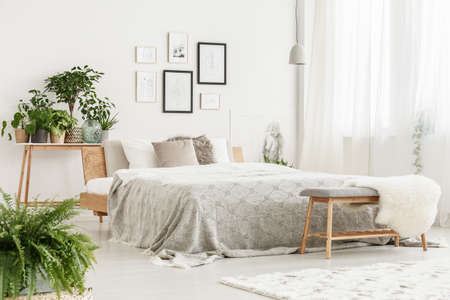 Bright stylish room with fresh potted plants, handmade posters and wooden bed with grey coverlet Stock Photo