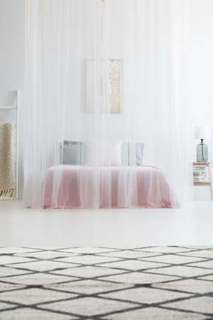 Elegant mosquito net bed canopy over king-size bed in white bedroom interior of modern apartment  Zdjęcie Seryjne