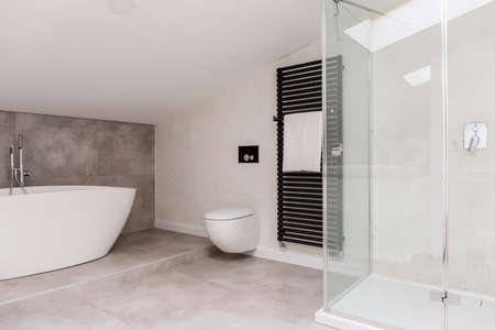 Glass shower and oval bathtub in bright bathroom with toilet and towel on heater Reklamní fotografie